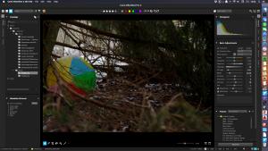 AfterShot Pro 2 muokkausnäkymä
